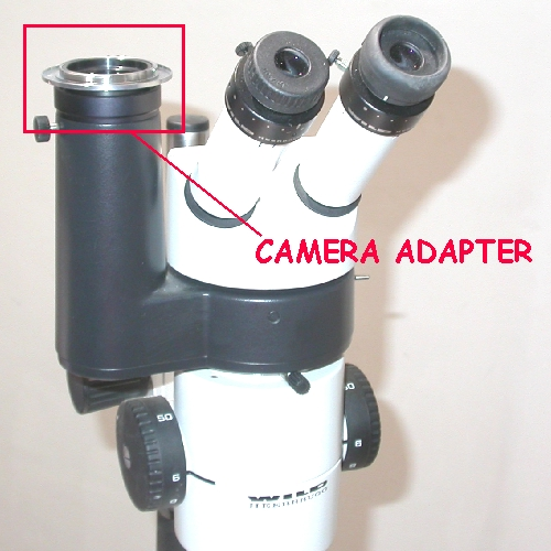 Raccordo fotografico per microscopio stereo WILD - LEICA  diametro 38mm