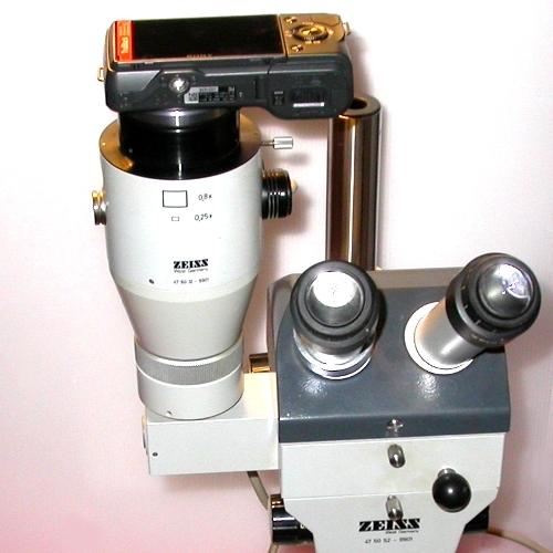 Raccordo fotografico per microscopio ZEISS 9901 a fotocamera digitale Sony NEX
