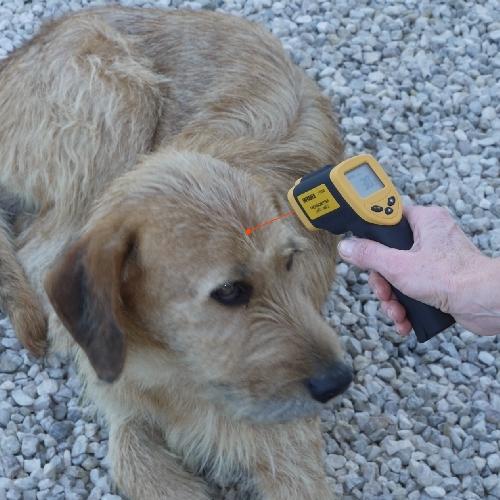 Termometro IR a raggi infrarossi senza contatto a mira laser