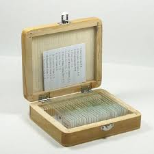 Set vetrini preparati per microscopio biologico insetti piante animali etc.